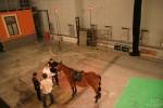 Motion capture felvételen jártunk