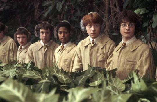 Harry Potter és a titkok kamrája DVD