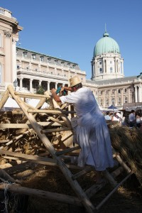 Mesterségek Ünnepe 2012. fotógaléria