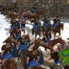 Boltokban a Highland Warriors
