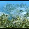 Új No Man's Land panorámakép