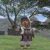 Final Fantasy XI benchmark 2