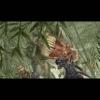 Dungeon Siege II E3 videó
