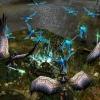 Dragonshard demo