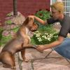 The Sims2 Házi kedvenc zenék