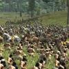 Medieval II: Total War Kingdoms - képek és videó