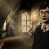 Harry Potter gyereknap a Vidámparkban