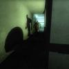 The Hunt videó