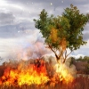 Far Cry 2 - már nem PC exkluzív