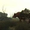 Újabb Fallout 3 képek