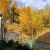 Újabb Mines of Moria helyszínek