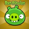 Bad Piggies PC-re is