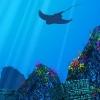 The Big Blue: új játékon dolgoznak az Ecco the Dolphin fejlesztői
