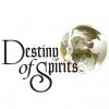Készül a Destiny of Spirits