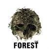The Forest Oculus Rift támogatással