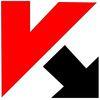 Heroes of the Storm skinek a Kaspersky Lab termékei mellé