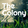 The Colony, a hangyaszimulátor