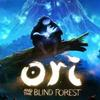 PC-n is Definitive Editiont kap az Ori and the Blind Forest