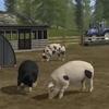 Állattenyésztés a Farming Simulator 17-ben
