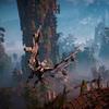Horizon: Zero Dawn bemutató a PlayStation Experience-ről
