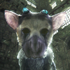 VR demót kap a The Last Guardian